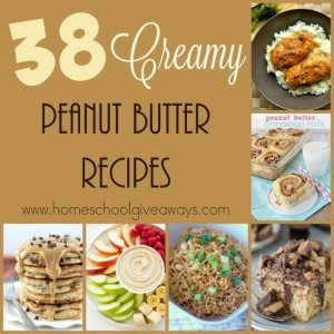 Do you love peanut butter as much as I do? Check out these creamy and delicious recipes from breakfast to snacks to chicken dishes and more! :: www.homeschoolgiveaways.com