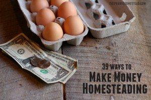 ways-make-income-homesteading