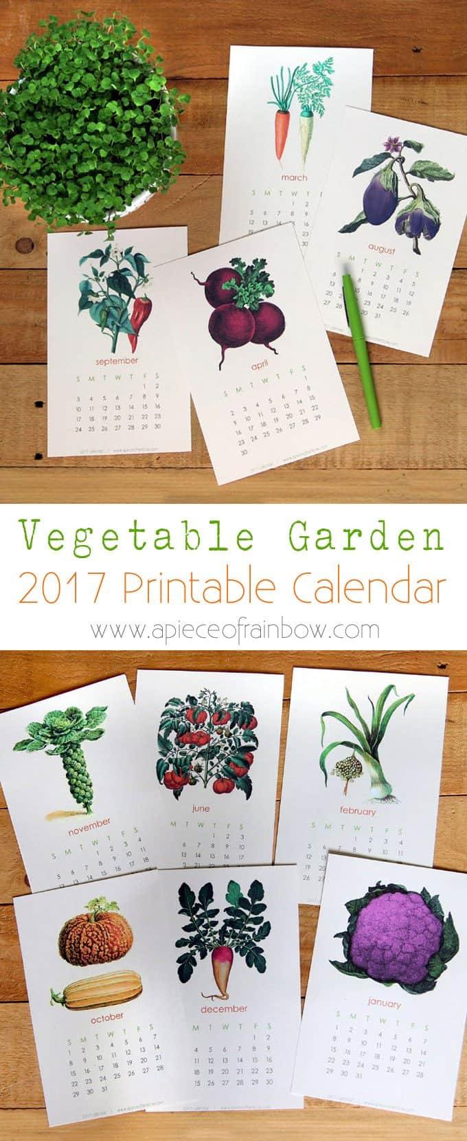 2017-printable-vegetable-garden-calendar-1