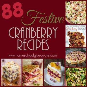 Cranberries just say Holidays to me! I have gathered 88 Festive breakfasts, sides, main dishes, beverages and desserts! :: www.homeschoolgiveaways.com