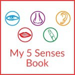 My-5-Senses-Book