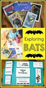 Bat-Unit-Study