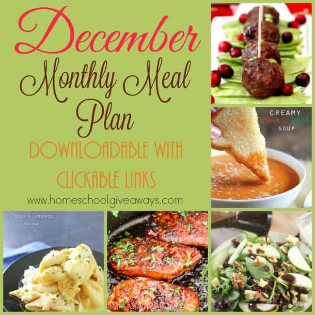 It is the last month of the year and probably one of the busiest for most families. Make those night time meals easier with this easy December Meal Plan.  :: www.inallyoudo.net