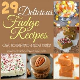 If you love fudge as much as I do, you don't want to miss these delicious recipes! From classic recipes to allergy friendly to low carb and more! :: www.homeschoolgiveaways.com