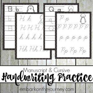Penguin HW Practice