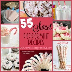 Do you love peppermint? Who knew it could be used in so many delicious treats. Check out these Sweet treats! :: www.homeschoolgiveaways.com