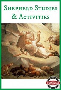 Shepherd-Studies