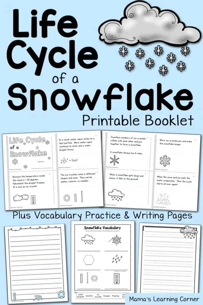 Free Printable Life Cycle Of A Snowflake Booklet And Worksheets. Snowflakelifecyclebookletandvocabularypractice650x975. Worksheet. Vocabulary Practice Worksheets At Clickcart.co