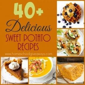 Sweet potatoes are a great Fall and Winter root vegetable to have on your table. Check out all these different sweet potato recipes. Including breakfasts, desserts, breads, salads and more! :: www.homeschoolgiveaways.com