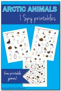 Arctic-Animals-I-Spy-Printables-Gift-of-Curiosity