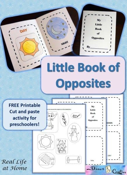 Free Little Book Of Opposites For Preschool Homeschool