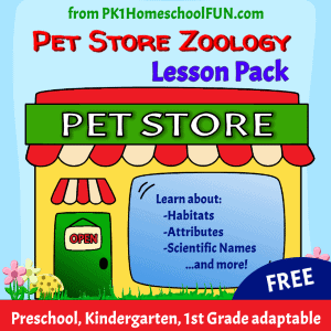 Science_lesson_for_kids_Pet_Store_Zoology_sq