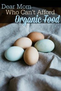 A-Letter-to-the-Mom-Who-Cant-Afford-Organic-Food-TheHumbledHomemaker.com_