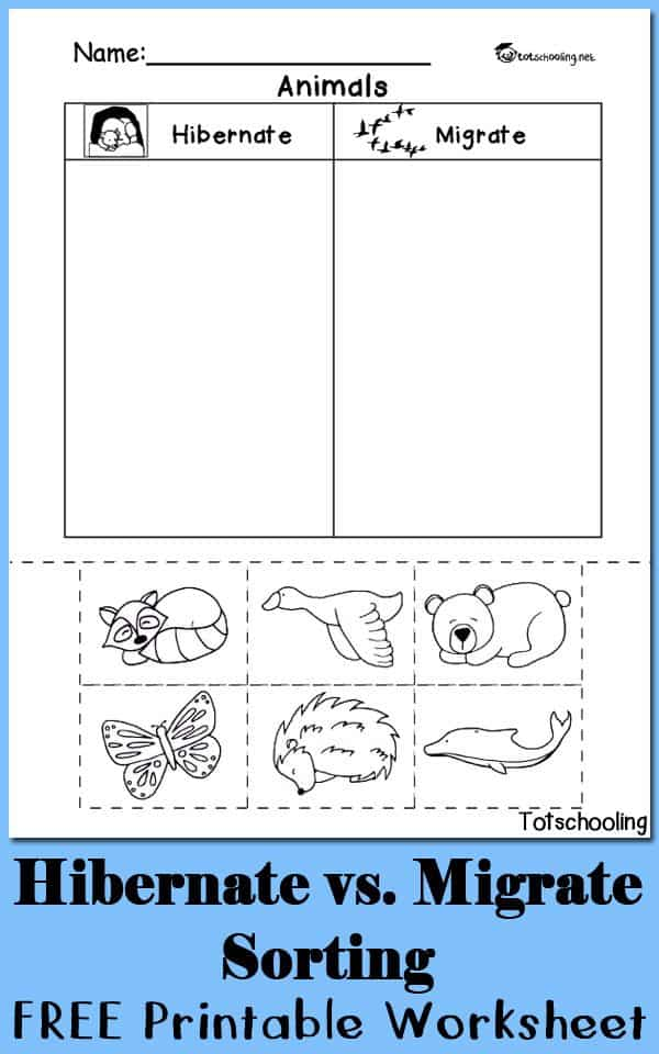 hibernation vs migration animal sorting worksheet homeschool giveaways. Black Bedroom Furniture Sets. Home Design Ideas