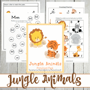 Jungle Animals PreK