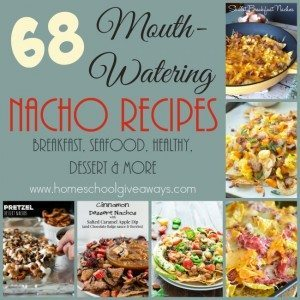 Who doesn't love a nice plate of nachos? There are so many different varieties and options out there! Check out these mouth-watering recipes that are sure to fill your stomach. :: www.homeschoolgiveaways.com