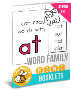 WordFamilyMinibookseBook-238x300