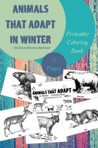 animals-that-adapt-coloring-pages