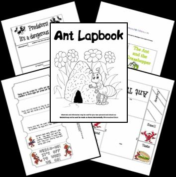 ant_lapbook