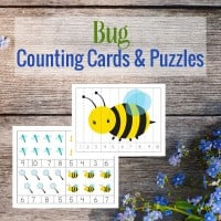 bug-counting-cards