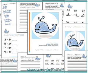 whales-math-copy-pic