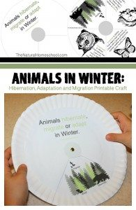 Animals-in-Winter-Hibernation-Adaptation-and-Migration-Printable-Craft-main