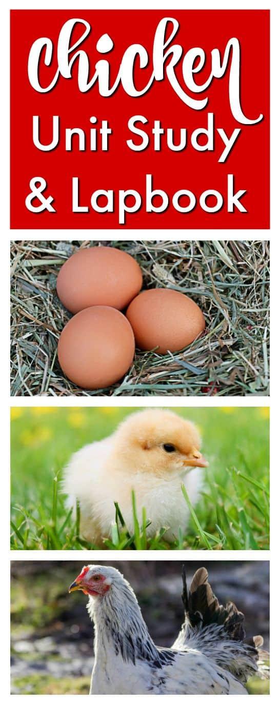 chickenunitstudy