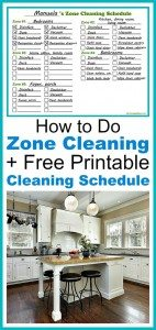 zonecleaning