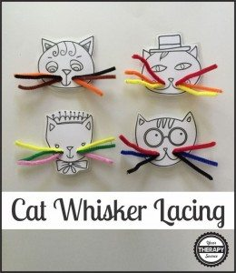 Cat-Whiskers-Lacing-886x1024