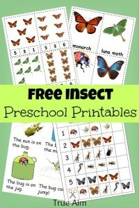 free-insect-preschool-printables