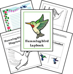 hummingbirds_complete