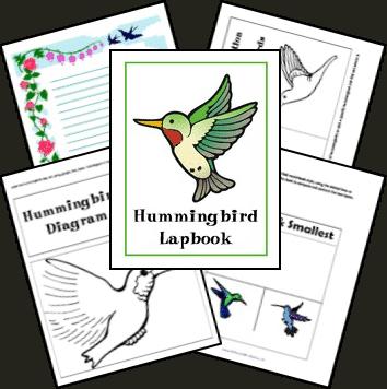 hummingbirds_complete
