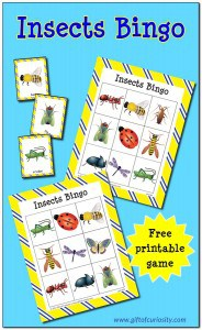 Insects-Bingo-Gift-of-Curiosity