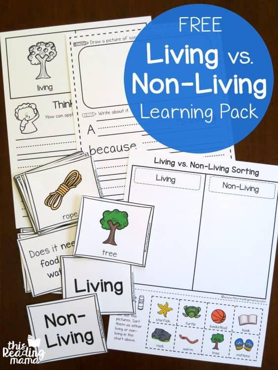 free printable living vs non living learning pack. Black Bedroom Furniture Sets. Home Design Ideas