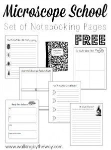 Free-Set-of-28-Notebooking-Pages-for-Learning-about-Microscopes-from-Walking-by-the-Way