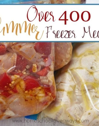 I love a delicious & quick meal during the summer! Check out this GIGANTIC list of Summer Freezer Meals! :: www.homeschoolgiveaways.com