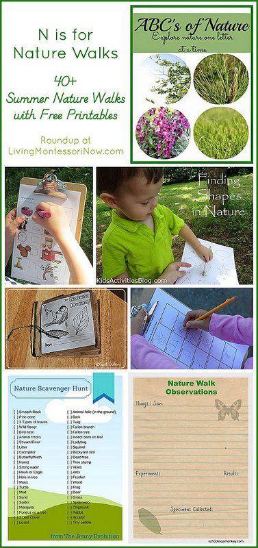 40 summer nature walks with free printables. Black Bedroom Furniture Sets. Home Design Ideas