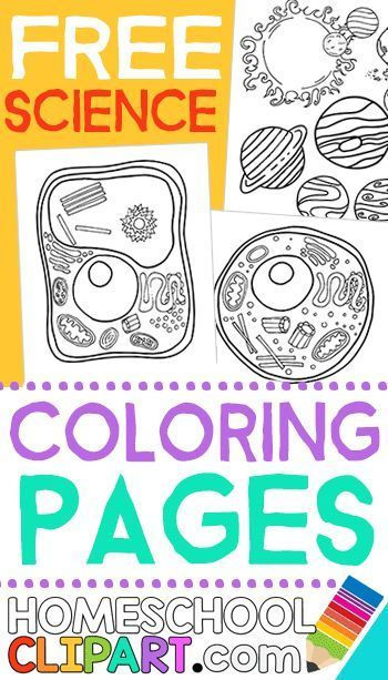 FREE Printable Science Coloring