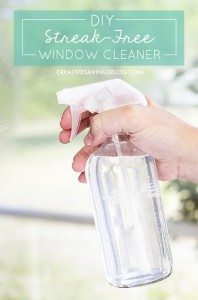 window-cleaner-PIN (1)