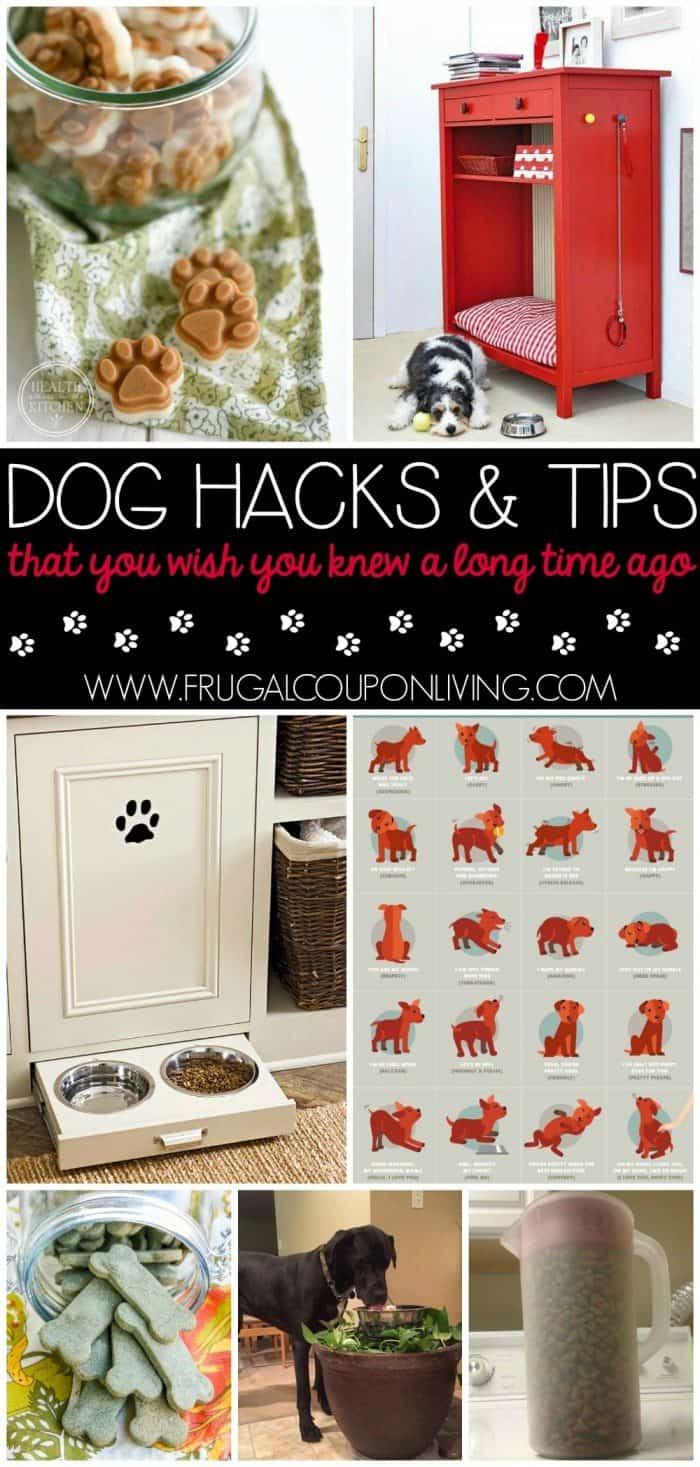 Dog-hacks-tips-frugal-coupon-living-better