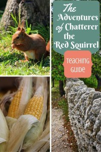 The-Adventures-of-Chatterer-the-Red-Squirrel1-683x1024