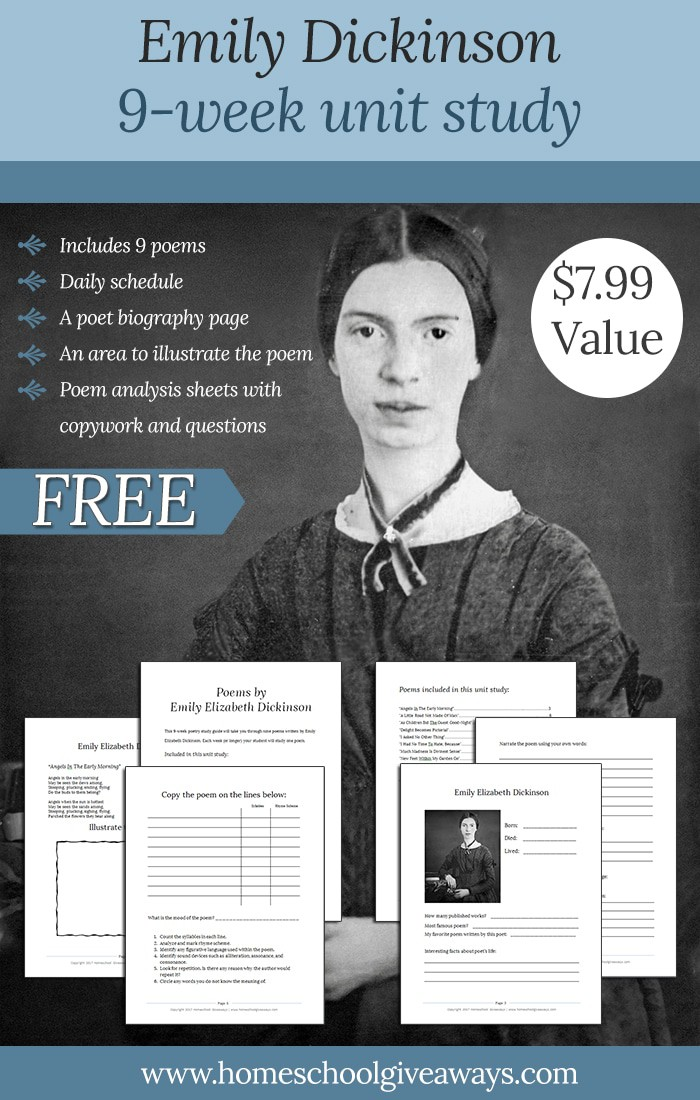 an analysis of dickinsons humor in emily dickinsons poetry Emily dickinson is a monumental figure, a true icon, to the realm of poetry in the 19th century a time when transcendentalism ruled upon the.