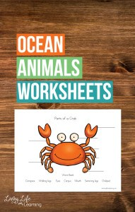 parts-of-ocean-animals-worksheets