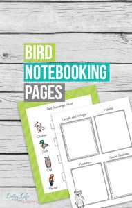 Bird-Notebooking-Pages