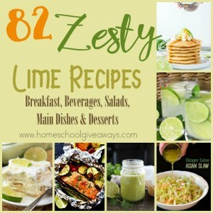 You can use limes in just about any type of recipe you can think of - from breakfast to beverages and main dishes to desserts. Check out the amazing ones I found! :: www.homeschoolgiveaways.com