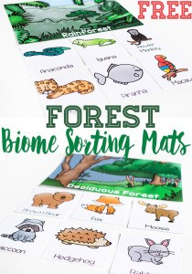 biome-sorting-mats-pin