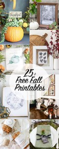 25FreeFallPrintables