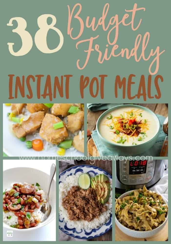 Looking for some delicious, quick and easy, Budget Friendly meals? Check out these Instant Pot dishes! :: www.homeschoolgiveaways.com