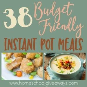 https://homeschoolgiveaways.com/2017/09/38-budget-friendly-instant-pot-meals/
