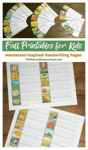 Fall-Printables-for-Kids-Montessori-Inspired-Handwriting-Pages-main1
